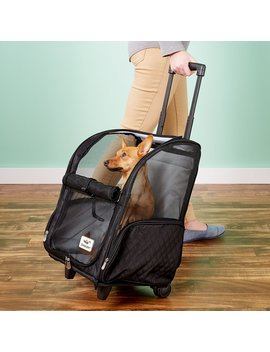 Snoozer Pet Products Roll Around 4 In 1 Travel Dog & Cat Carrier by Snoozer Pet Products