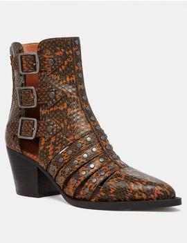 Pheobe Bootie In Snakeskin by Coach