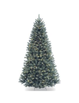 6.5 Ft. North Valley Blue Spruce Tree With Clear Lights by National Tree Company