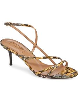 Carolyne Genuine Snakeskin Sandal by Aquazzura