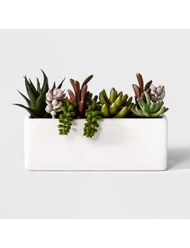 "3.5"" X 3.5"" Artificial Succulents In Pot Green/White   Project 62™ by Project 62"
