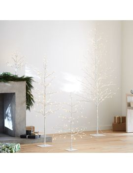 Led Birch Trees by Crate&Barrel