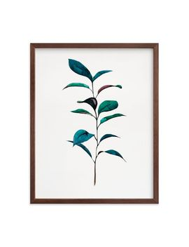 Minted For West Elm   Ruscus by West Elm