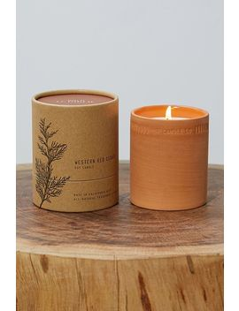 P.F. Candle Co. Night Blooming Red Cedar 8oz Terra Candle by P.F. Candle Co.
