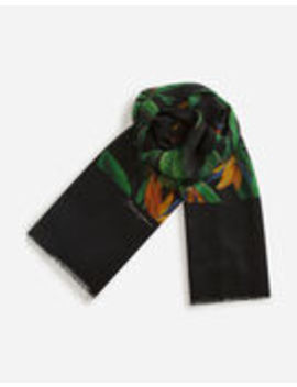 Cashmere Scarf With Bird Of Paradise Print by Dolce&Gabbana