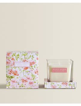 Essence De Rose Scented Candle  Candles   Products   Fragrances by Zara Home