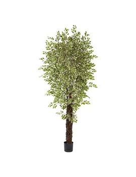 Nearly Natural 7.5' Variegated Mini Ficus Tree by Nearly Natural