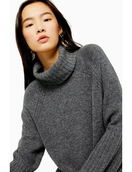 Roll Neck Sweater by Topshop