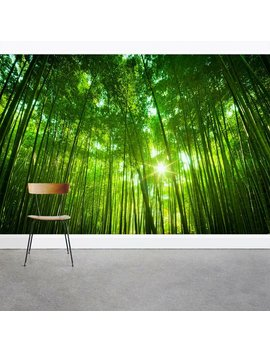 "Giant Bamboo Forest Canopy 8' X 144"" 3 Piece Wall Mural by Wallums Wall Decor"