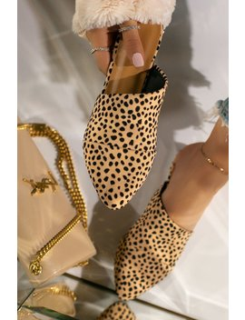 Office Hours   Cheetah by Miss Lola