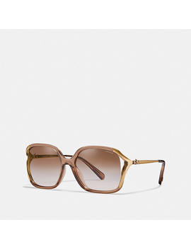 Oversized Horse And Carriage Sunglasses by Coach
