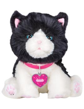 Little Live Pets Muffin My Dream Kitten, Walmart Exclusive! by Little Live Pets