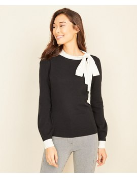 Tipped Tie Neck Sweater by Ann Taylor