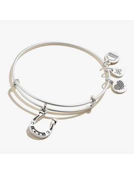Crystal Horseshoe Charm Bangle Rafaelian Silver | Eagala by Alex And Ani
