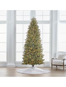 Douglas Fir 9' Slim Profile Tree by Frontgate