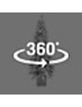 Holiday Living 5 Ft Pre Lit Spruce Slim Flocked Artificial Christmas Tree With 50 Constant Multicolor Led Lights by Lowe's