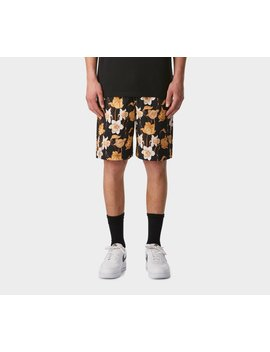 Frankie Short   Datura by I Love Ugly