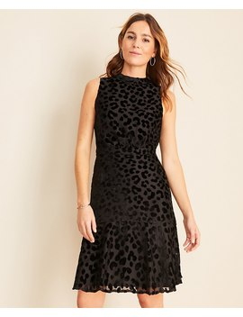 Cheetah Velvet Mock Neck Sheath Dress by Ann Taylor