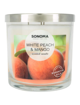 Sonoma Goods For Life™ White Peach & Mango 14 Oz. Candle Jar by Sonoma Goods For Life