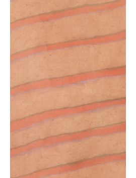 Digital Sheer Organza Top by Eckhaus Latta