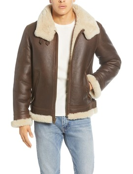 Auden Genuine Shearling Trim Leather Aviator Jacket by Ugg