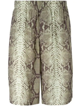 Snake Print Shorts by Jean Paul Gaultier Pre Owned