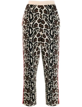 Knitted Leopard Print Track Pants by Stella Mc Cartney