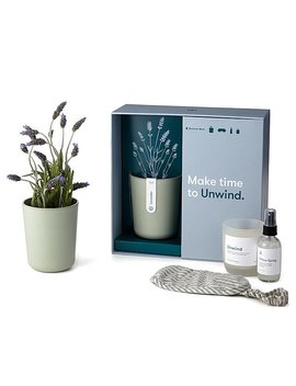 Unwind Lavender Gift Set by Uncommon Goods