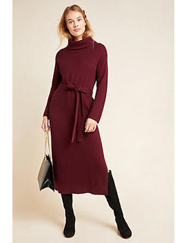 Carlotta Turtleneck Jumper Dress by Anthropologie