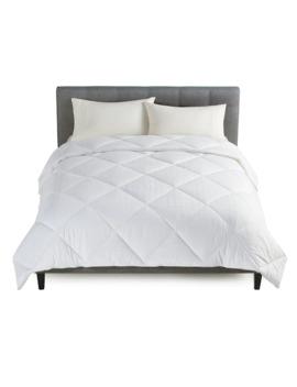 Cuddl Duds Down Alternative Year Round Warmth Comforter by Cuddl Duds