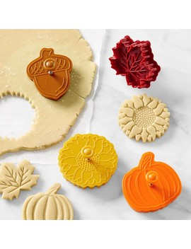 Fall Impression Cookie Stamps, Set Of 4 by Williams   Sonoma