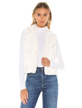 Aint It Fuzzy Faux Fur Vest by Bb Dakota