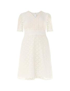 Esme Dress by Studio 8