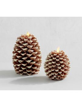 Premium Flicker Flameless Pinecone Wax Candle by Pottery Barn