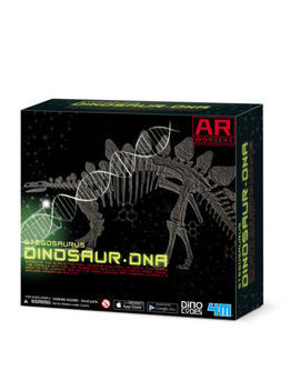 4 M Stegosaurus Dinosaur Dna Skeleton Science Kit by 4 M