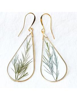 22k Gold Plant Earrings, Real Leaf Earrings Girlfriend Gift, Wild Dill Terrarium Earrings Plant Lover Gift, Pressed Leaves Resin Earrings by Etsy