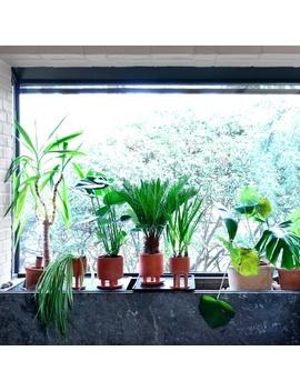 Studio Arhoj Big Tri Pot   Terracotta by Garmentory