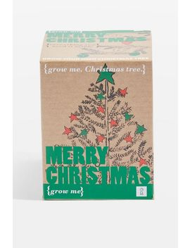 Grow Me: Merry Christmas by Topshop