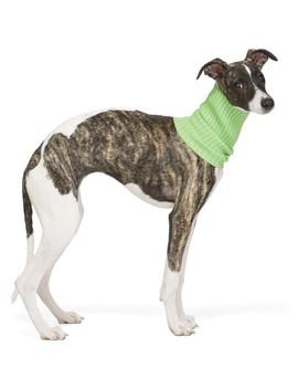 Green Nonna Turtleneck Dog Collar by Giu Giu