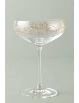 Fiorella Coupe Glasses, Set Of 4 by Anthropologie