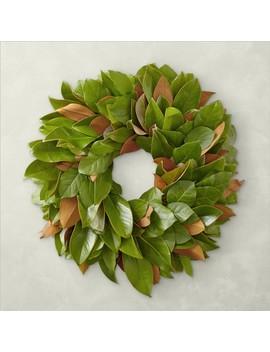 Magnolia Salal Wreath by Williams   Sonoma