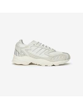 Torsion Trdc   Article No. Eh1550 by Adidas Originals