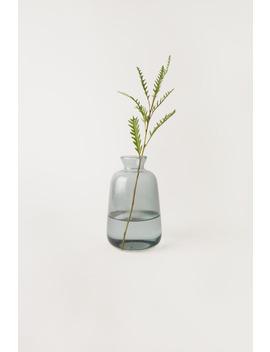 Bottle Vase 3384 by Oak + Fort