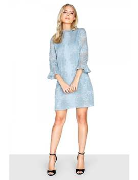 Little Mistress Cornflower Shift Dress by Little Mistress