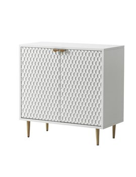 Maximiliano 2 Door Apothecary Accent Cabinet by Allmodern