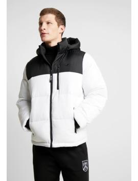 Puffer Hood   Winter Jacket by Hollister Co.