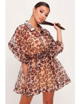 Brown Leopard Print Organza Short Sleeve Mini Shirt Dress by I Saw It First