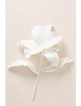 Paper Lilium Flower Stem by Anthropologie