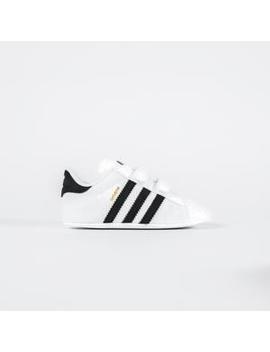 Adidas Originals Crib Superstar by Adidas