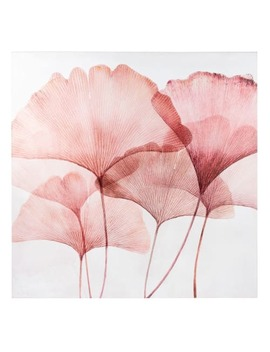 White And Pink Ginkgo Printed Canvas 75x75 by Maisons Du Monde